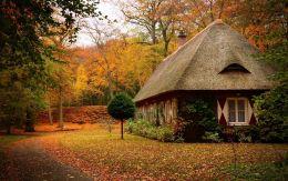осень на даче